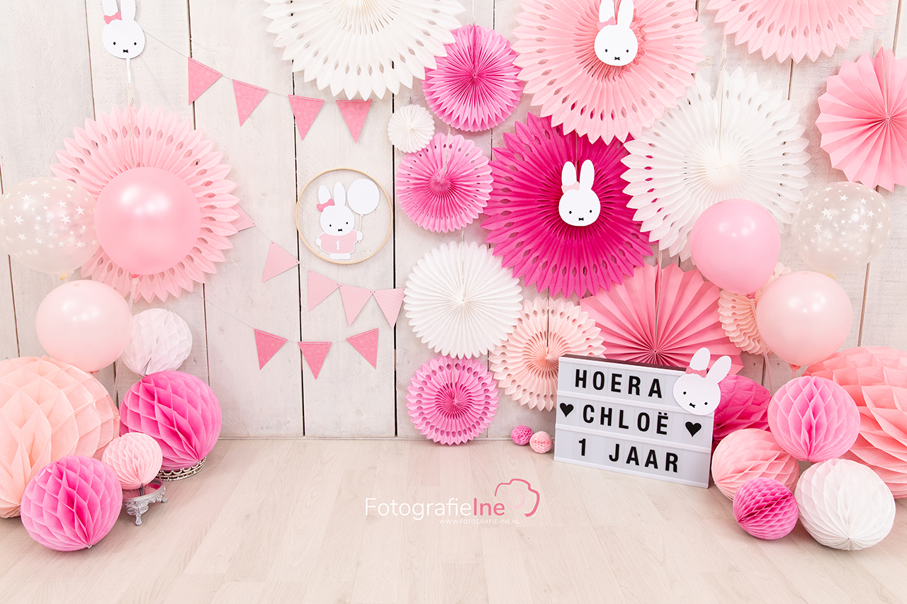Fotografie Ine Nijntje cakesmash achtergrond Ine van Boerdonk