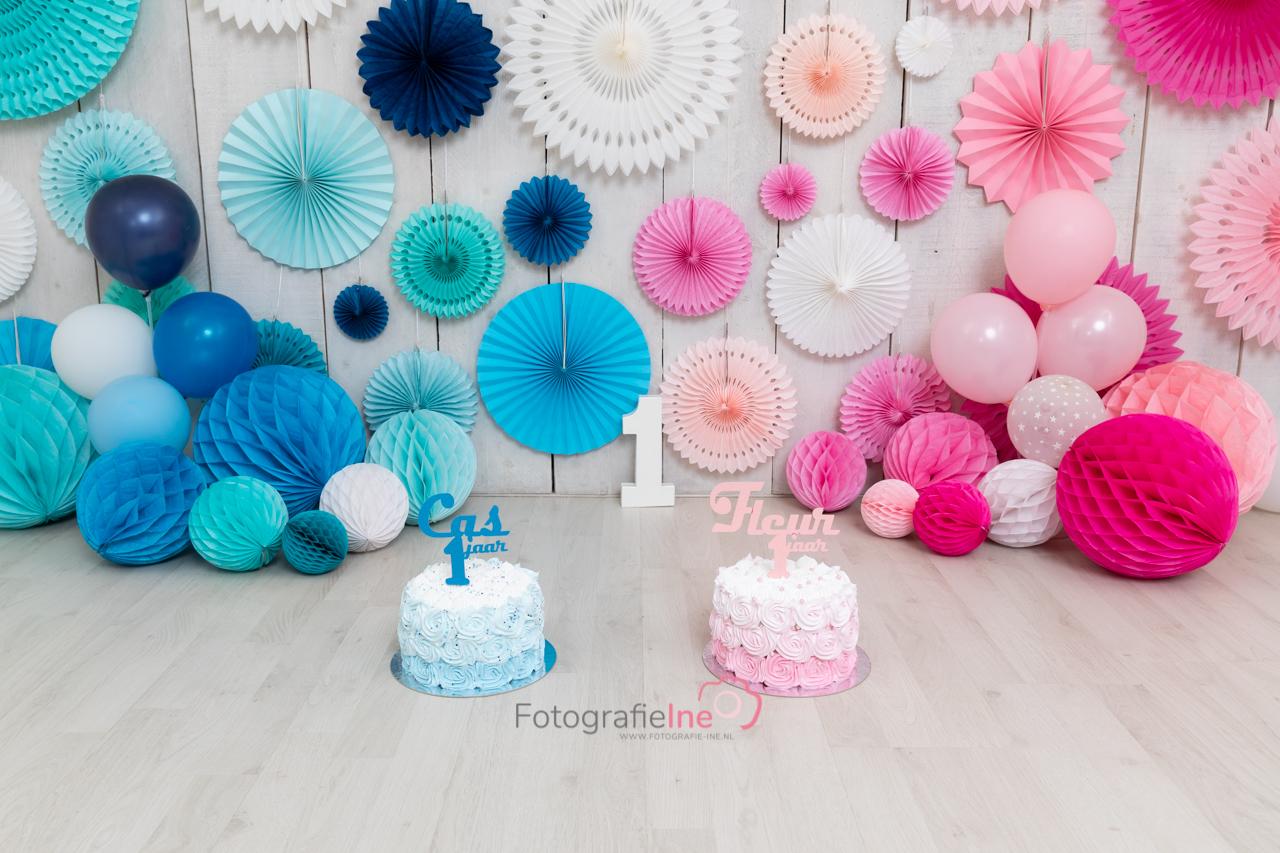 Fotografie Ine cakesmash 2-ling jongen meisje Cas Fleur roze blauw