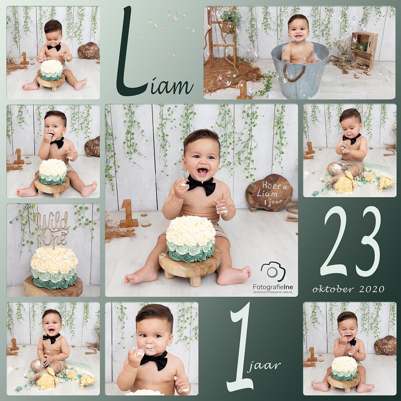 Fotografie Ine collage cakesmash Liam naturel jungle hout