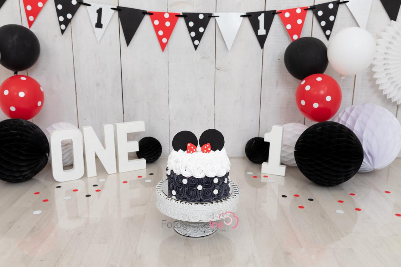 Fotografie-Ine Mini Mouse cakesmash achtergrond micky mouse Disney