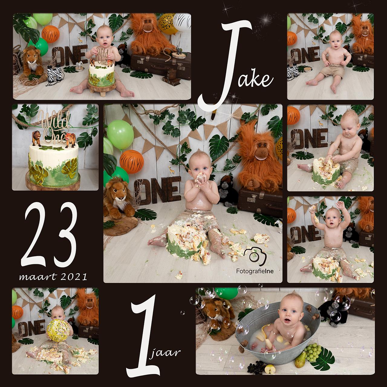 Fotografie Ine collage cakesmash Jake met logo